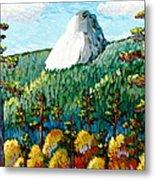 Colorful View Of Idyllwild California Metal Print