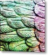 Colorful Wings Metal Print