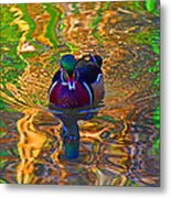 Colorful World Of Wood Duck Metal Print