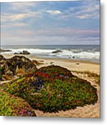 Colors And Texures Of The California Coast Metal Print