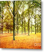 Colors Cool Metal Print by Boon Mee