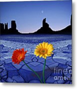 Colors In The Valley Metal Print