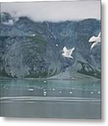 Colors Of Alaska - Glacier Bay Metal Print
