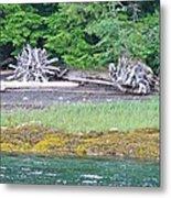Colors Of Alaska - Layers Of Greens Metal Print