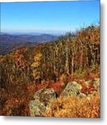 Colors Of Autumn In Shenandoah National Park Metal Print