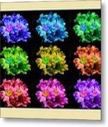 Colors Of Cactuses Metal Print