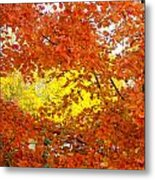 Colors Of Fall 2 Metal Print