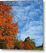 Colors Of Fall 2 Metal Print