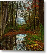 Colors Of Fall Metal Print by Kristi Swift