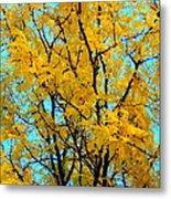 Colors Of Fall - Smatter Metal Print