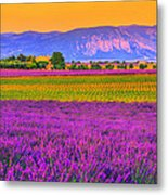 Colors Of Provence Metal Print