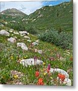 Colors Of The Rainbow - Colorado Mountain Summer Metal Print