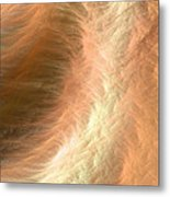 Colors Of The Wind No.2 Metal Print