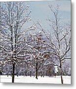 Colors Of Winter Metal Print