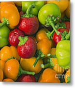 Colourful Mini Bell Peppers Metal Print