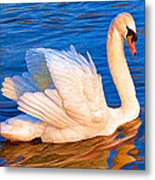 Colourful Swan Metal Print