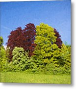 Colourful Trees Metal Print