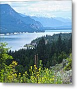Columbia Lake Which Is Source Of The Columbia River-bc  Metal Print