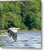 Come And Go Blues Metal Print