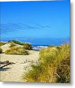 Come Follow Me Metal Print by Denise Darby