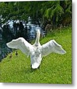 Come On Little Ones Back In The Water Metal Print