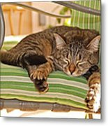 Comfy Kitty Metal Print