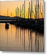 Coming In Metal Print by Mike Reid