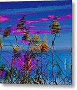 Common Reeds At Sunrise Metal Print