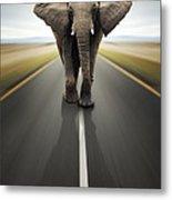 Heavy Duty Transport / Travel By Road Metal Print