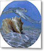 Conch And Ladyfish, 2001 Pair Metal Print