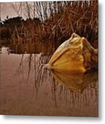 Conch Hatteras Sound 2/10 Metal Print