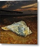 Conch Shell And Pier Predawn 2 10/18 Metal Print