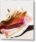 Conch Shell By Sharon Cummings Metal Print by William Patrick