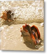 Conchs In Surf 2 Antique Metal Print