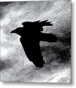 Condor In Flight Metal Print
