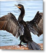 Conductor Metal Print by Deb Halloran