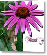 Cone Thank You Metal Print
