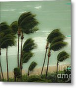 Confronting The Winds Metal Print