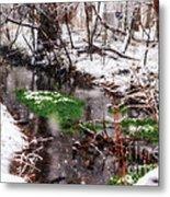 Confused Spring Or Winter Metal Print