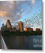 Congress Avenue Bats Metal Print