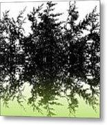 Conifer Lime Metal Print
