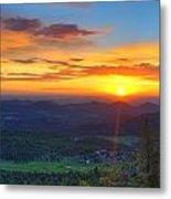 Conifer Sunrise Metal Print