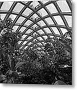 Conservatory Denver Botanic Garden Black And White  Metal Print