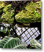 Conservatory Reflections Metal Print