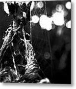 Contaminated Web Metal Print by Tyler Lucas