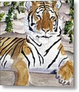 Contemplating Dinner Metal Print