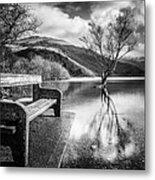 Contemplation In Monochrome Metal Print