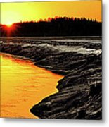 Contrasts In Nature Metal Print