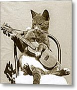 Cool Cat Playing A Guitar Circa 1900 Historical Photo By Photo  Henry King Nourse Metal Print