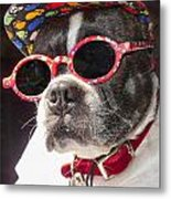 Cool Daddy Pooch Metal Print